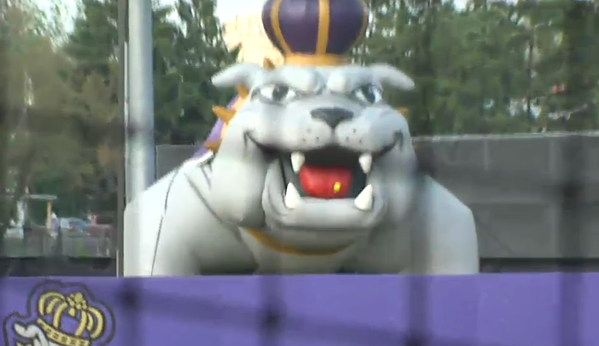 Duke Dog Homer
