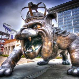 cropped-duke-dog-statue.jpg